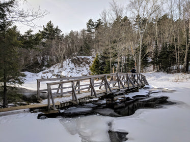 snow covered walking bridge in forest