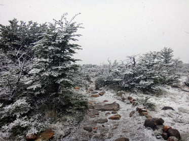 snow dusted rocky path in winter