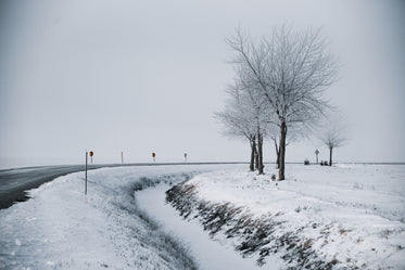 snowy landscape of a winter road curving through trees