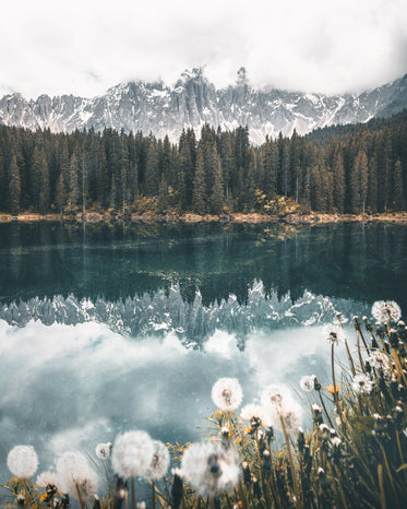 snowy mountains reflected in still lake