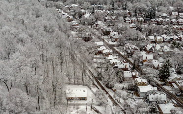 snowy rooftops amidst frosty trees