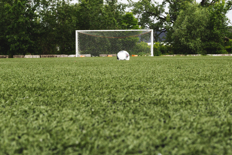 Soccer Ball In Field With Net