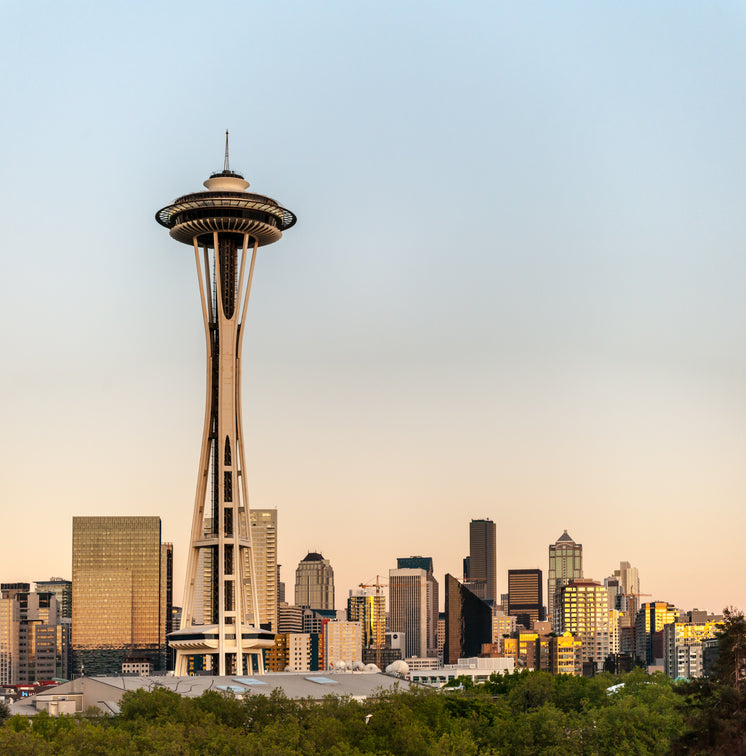 space-needle-at-sunset.jpg?width=746&for