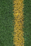 sports field painted line