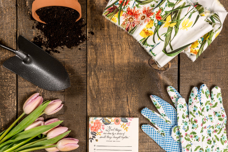 Spring And Garden Theme Flat Lay