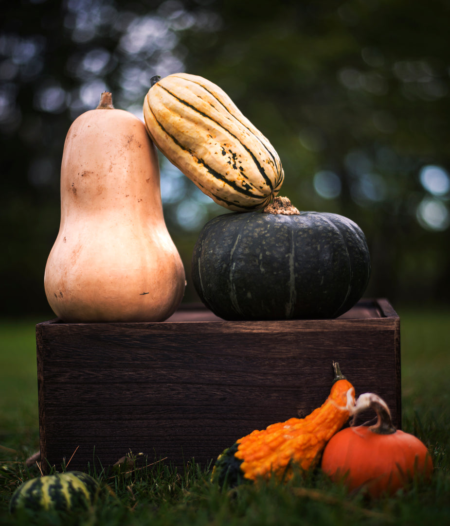 review related literature about squash vegetable Raw foods diets: a review of the literature much of what is known about vegetarian diets and related health effects is based on and squash provided the.