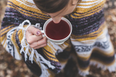 Picture of Stay Cozy, Drink Tea - Free Stock Photo