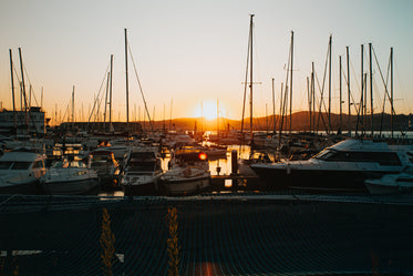 sunsets in a marina full of boats