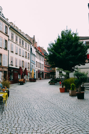 tables from cafes and a tree line a cobbled street