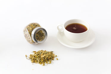 Picture of Tea Time - Free Stock Photo