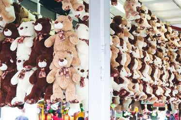 Free Teddy Bear Carnival Prizes Photo — High Res Pictures