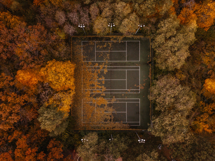 Tennis Courts In Autumn