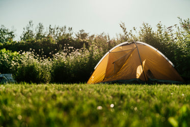 tent at fields edge