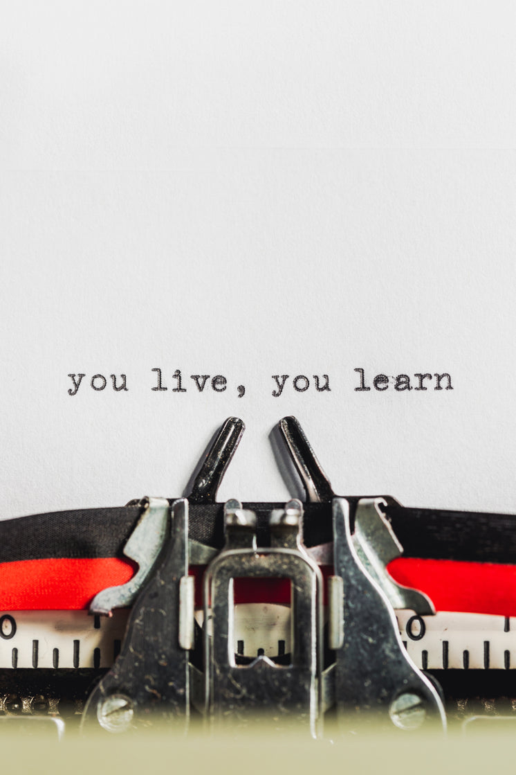 Text On Typewriter States You Live, You Learn