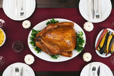 Browse Free HD Images of Thanksgiving Turkey Dinner