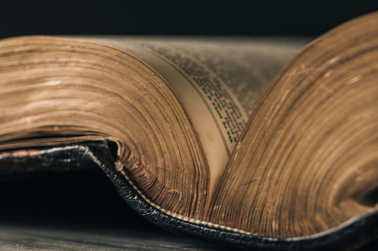 The Gilded Pages On Antique Book