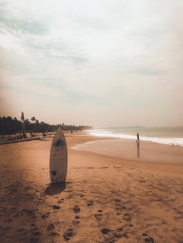 the lonely surfboard