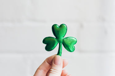 three leaf clover held in hand