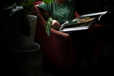 torso of a person holding a large book on their lap