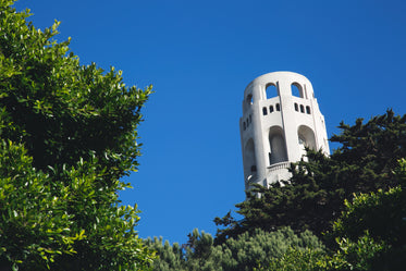 tower peeking through trees