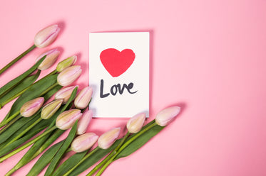 tulip flowers with love card