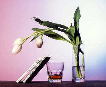 tulips drink and books