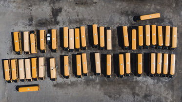 two rows of school busses