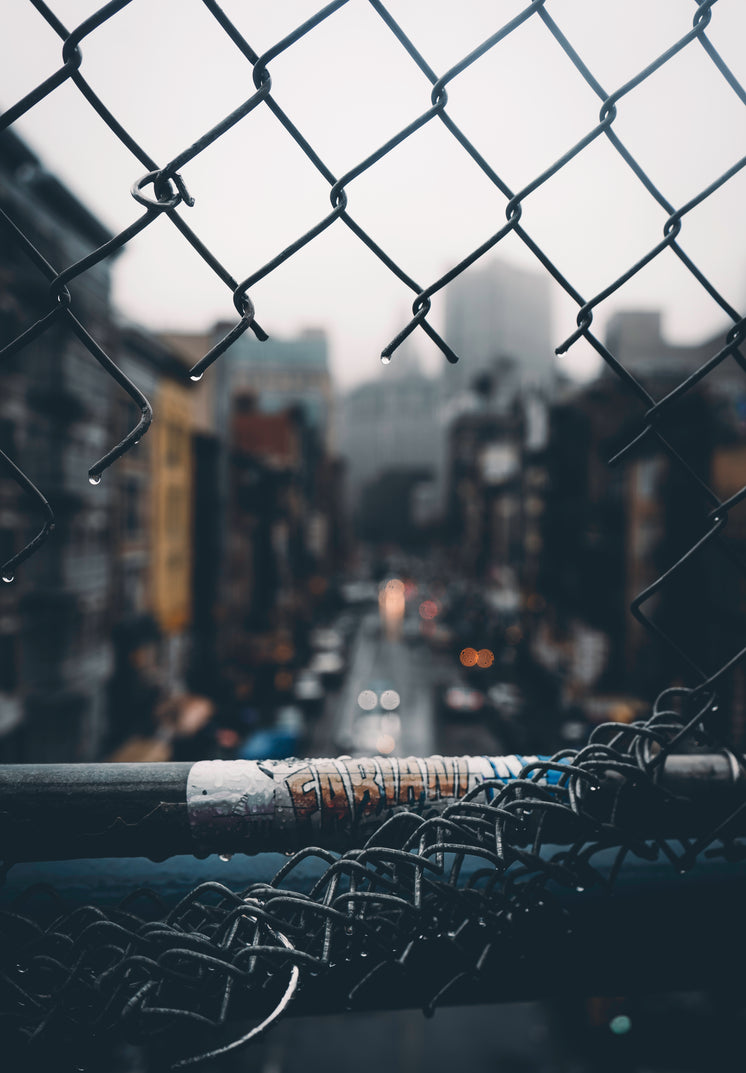 Urban View Through Cut Chain Link Fence