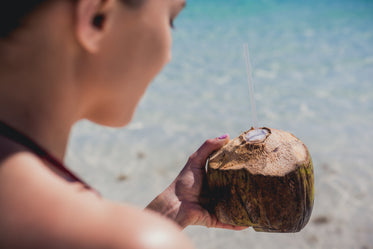 vacation holiday coconut drink
