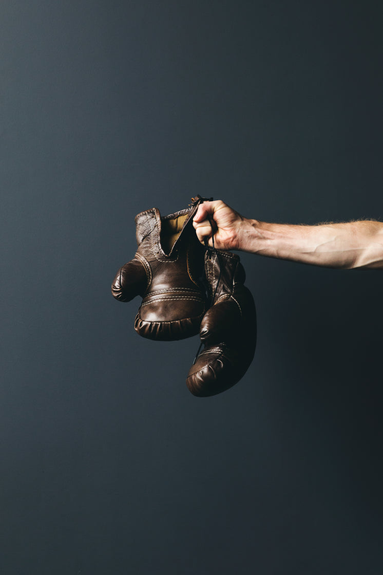 Vertical Antique Boxing GLoves