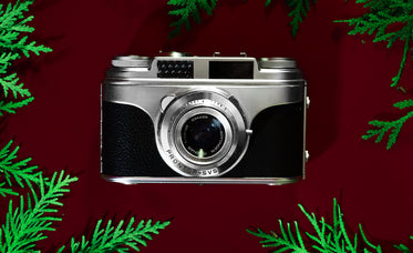 vintage silver camera surrounded by foliage