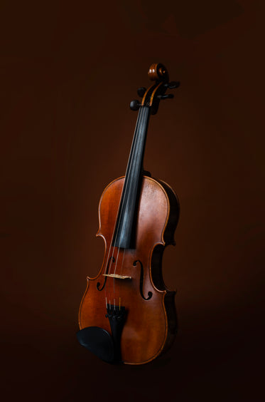 violin instrument on brown background