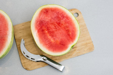 watermelon scooper