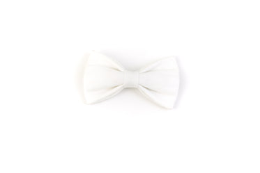 Picture of White Dog Bowtie - Free Stock Photo
