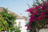 white mediterranean buildings splashed with color