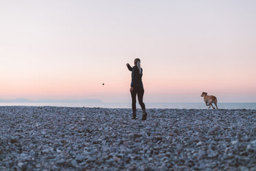 woman and dog play on the beach