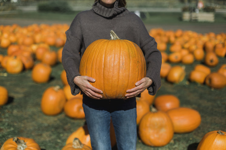 Woman Holding Perfect Pumpkin