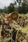 woman holding up a dry sunflower
