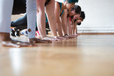 women in a row plank pose