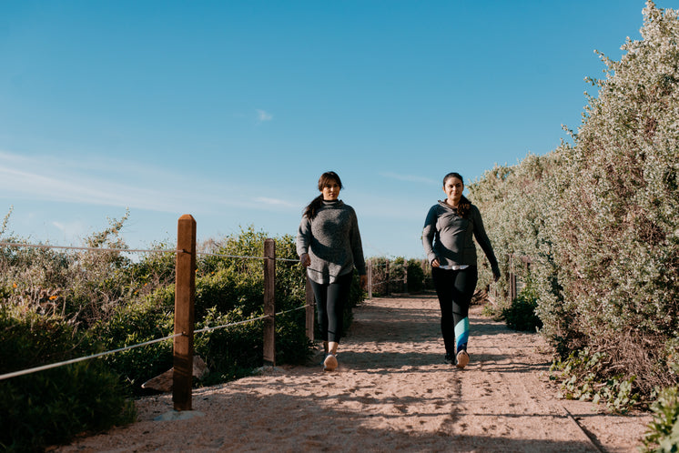 Women In Activewear Take A Beachside Hike On A Sandy Path