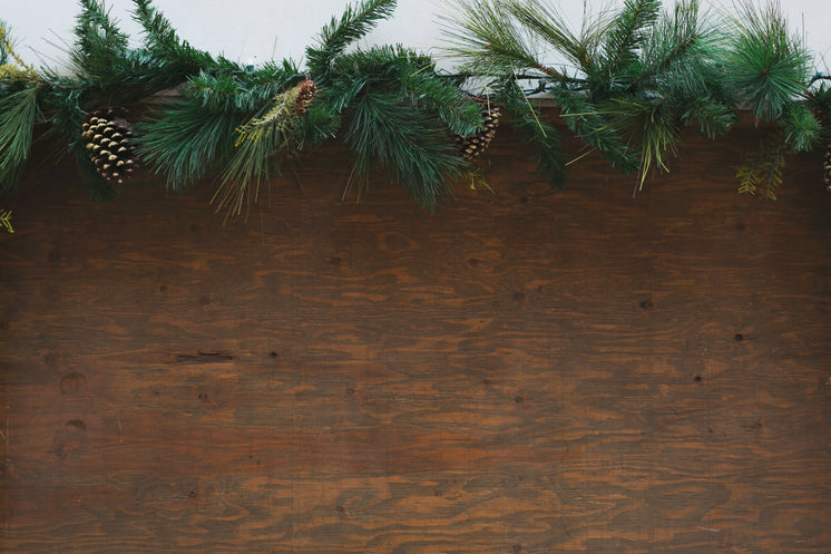 Wood Background Wth Festive Greenery