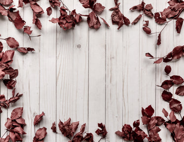 wood panel background framed by leaves
