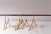 wooden clothes hangers cling emptily to the shiny shop rack