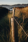 wooden fence post surrounded with tall wild grass