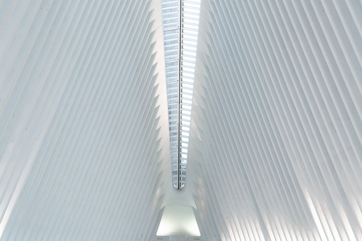 World Trade Centre Station Ceiling
