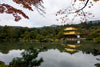 yellow building sits on a lake surrounded by trees