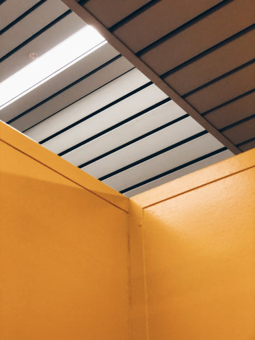 yellow walls with slatted ceiling