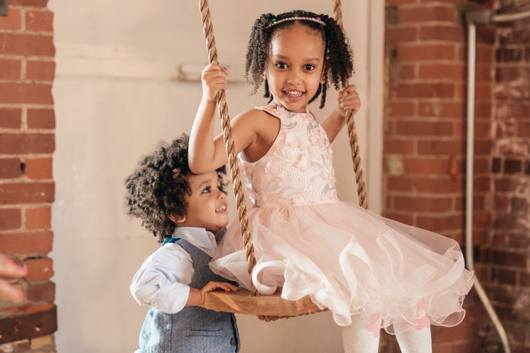 Young Boy Pushes Sister On Swing