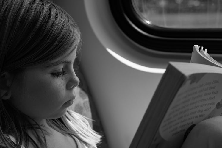 Young Girl Reading On Train