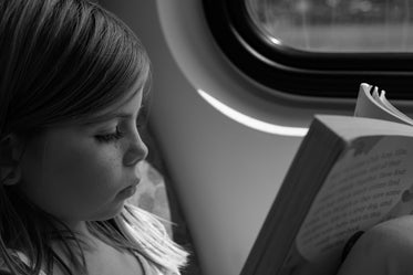 High Res Young Girl Reading On Train Picture — Free Images